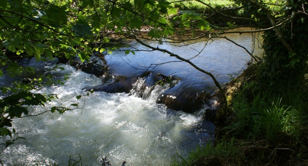 Tame rapids on the River Camel