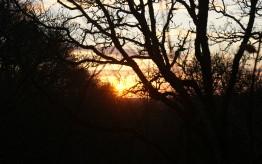 A Winter sunset at Darrynane!