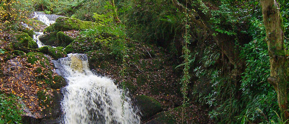 A private waterfall open to guests at Darrynane Self Catering Holiday Lets, whether on a short break or weekly stays