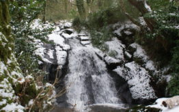 A snowy Darrynane waterfall, not seen very often in the last 20 years