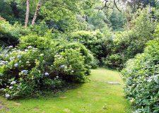 Lodge Cottage Private Garden Area