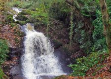 Waterfall-at-darrynane